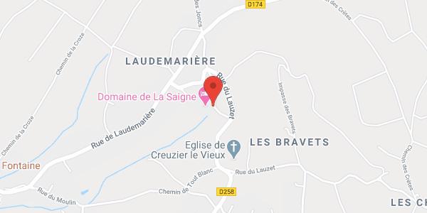 Manoir de La Saigne