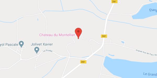 Château du Montellier