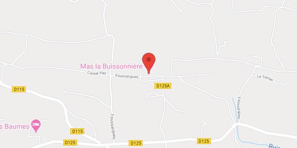 Mas La Buissonnière